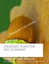 Strategic Plan For XYZ Company