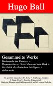 Gesammelte Werke: Tenderenda der Phantast + Hermann Hesse: Sein Leben und sein Werk + Zur Kritik der deutschen Intelligenz + vieles mehr