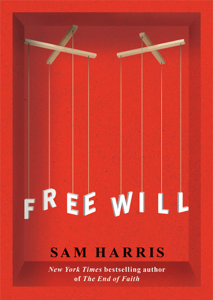 Free Will Summary