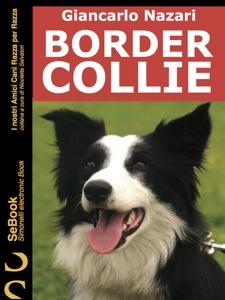Border Collie Book Cover