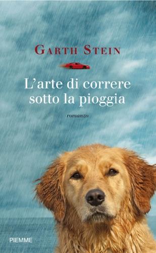 Garth Stein - L'arte di correre sotto la pioggia