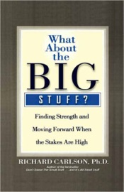 What About the Big Stuff? PDF Download