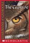 Guardians Of GaHoole 1 The Capture