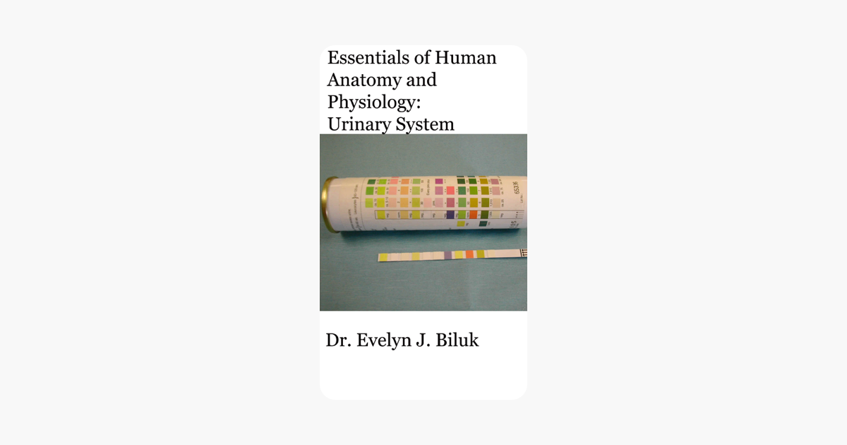 ‎Essentials of Human Anatomy and Physiology: Urinary System