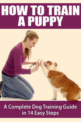 How to Train a Puppy - Michele Ehlers book
