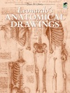 Leonardos Anatomical Drawings