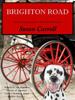 Susan Carroll - Brighton Road artwork
