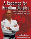 A Roadmap For BJJ