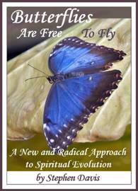 Butterflies Are Free To Fly: A New and Radical Approach to Spiritual Evolution book