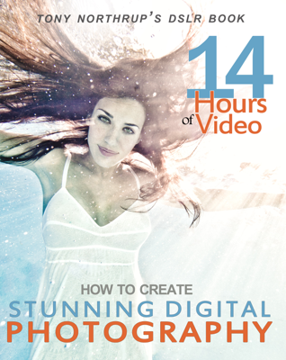 Tony Northrup's DSLR Book: How to Create Stunning Digital Photography - Tony Northrup book