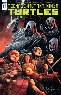 Teenage Mutant Ninja Turtles #61 - Tom Waltz book