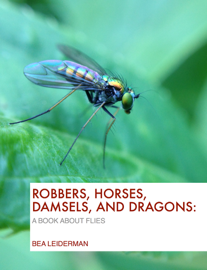 Robbers, Horses, Damsels, and Dragons