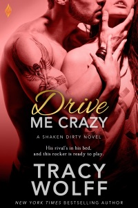 Drive Me Crazy Book Cover