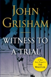 Witness to a Trial PDF Download