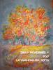 Viesturs Bambans, M.sc., CISSP, CHFI, CEH - Daily Readings + 2017 Latvian-English Texts artwork