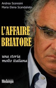 L'affaire Briatore Book Cover