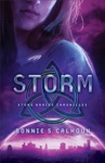 Storm Stone Braide Chronicles Book 3