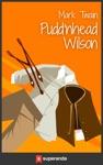 Puddnhead Wilson Illustrated