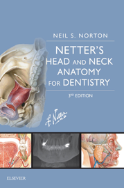 Netter's Head and Neck Anatomy for Dentistry E-Book book
