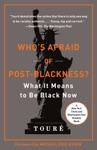 Whos Afraid Of Post-Blackness