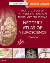 Netter's Atlas Of Neuroscience E-Book