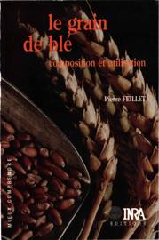 Le grain de blé