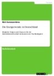 Download and Read Online Die Energiewende in Deutschland