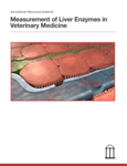 Measurement of Liver Enzymes in Veterinary Medicine