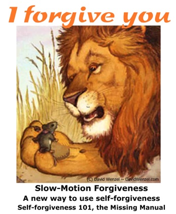 Forgive from Your Soul Slow-Motion Self-Forgiveness(SM), the Missing Manual Forgiveness 101 How-to eBook image