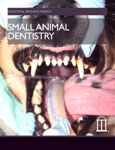 Small Animal Dentistry