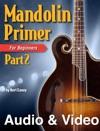 Mandolin Primer Part 2