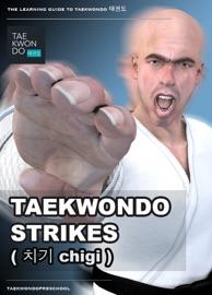 TAEKWONDO STRIKES ( 치기 CHIGI )