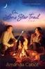 On Lone Star Trail (Texas Crossroads Book #3)