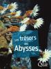 Les trésors des abysses - Daniel Desbruyères