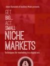 Get BigAct Small Niche Markets