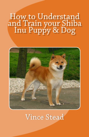 How to Understand and Train Your Shiba Inu Puppy & Dog
