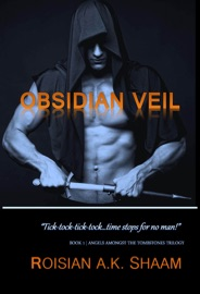 Obsidian Veil Book One Tick Tock Tick Tock Time Stops For No Man