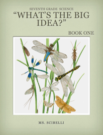 Biology What's the Big Idea? book