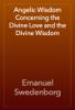 Emanuel Swedenborg - Angelic Wisdom Concerning the Divine Love and the Divine Wisdom artwork