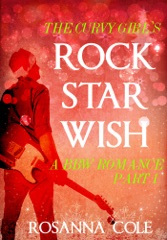 The Curvy Girl's Rock Star Wish 1