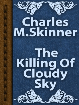 The Killing Of Cloudy Sky image