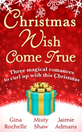 Christmas Wish Come True PDF Download