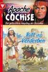 Apache Cochise 15 - Western