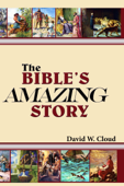 The Bible's Amazing Story