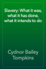Cydnor Bailey Tompkins - Slavery: What it was, what it has done, what it intends to do artwork