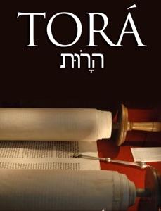 TORA Book Cover