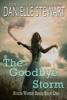 Danielle Stewart - The Goodbye Storm artwork