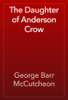 George Barr McCutcheon - The Daughter of Anderson Crow artwork