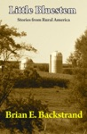 Little Bluestem Stories From Rural America
