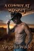 A Cowboy at Midnight